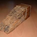 Active termite bait