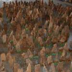 Termite Baits